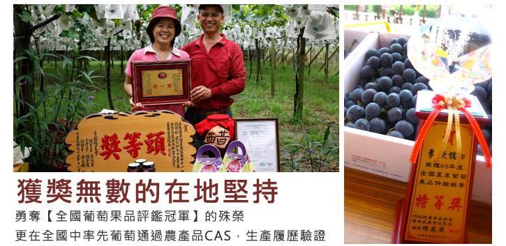 【松原農庄】冠軍葡萄的產地故事